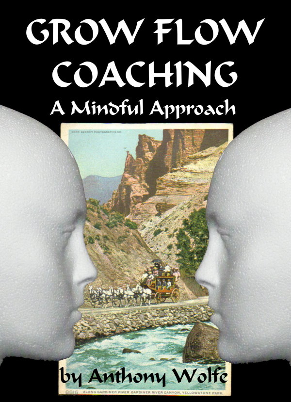 GROW-FLOW Coaching - A Mindful Approach